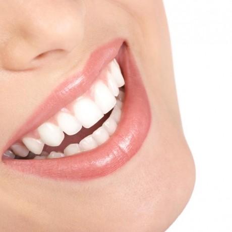 Dentysta w Vest-Agder 45910938