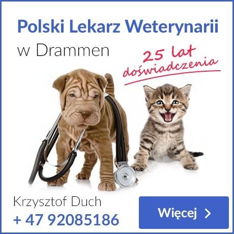 WEterynarz Drammen